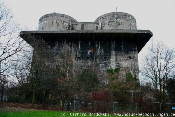 Wilhelmsburger Bunker in Hamburg