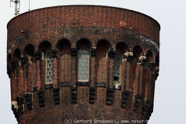Alter Wasserturm in Hamburg Rothenburgsort